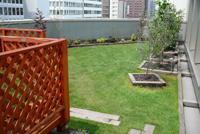 屋上緑化の効果/造園 日本庭園 滋賀県