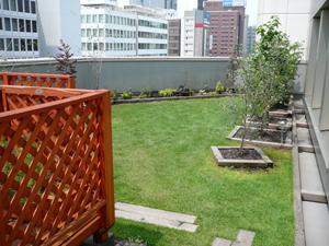 屋上庭園/造園 日本庭園 滋賀県