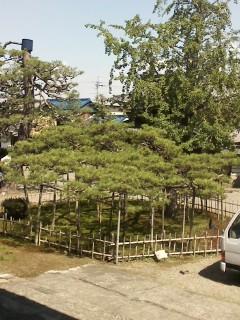作庭ブログ/滋賀県 造園